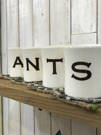 ANT'S Southern Resortのここが良い!!!